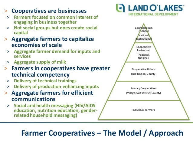 Farmer Cooperatives – The Model / Approach ˃ Cooperatives are businesses ˃ Farmers focused on common interest of engaging ...