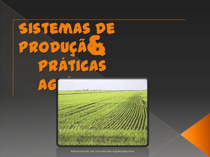 Sistemas de Produção<br />&<br />Práticas Agrícolas<br />Retirada do site: http://pt.wikipedia.org/wiki/Agricultura<br />