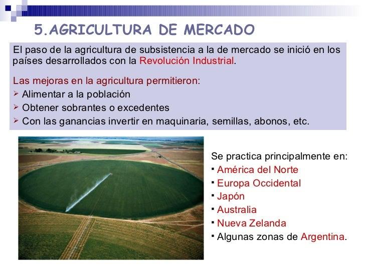5.AGRICULTURA DE MERCADO <ul><li>Se practica principalmente en: </li></ul><ul><li>América del Norte </li></ul><ul><li>Euro...