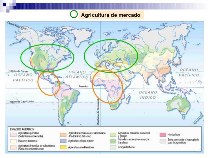 Agricultura de mercado