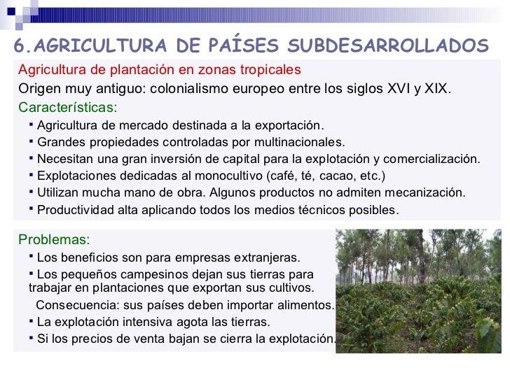 <ul><li>Agricultura de plantación en zonas tropicales </li></ul><ul><li>Origen muy antiguo: colonialismo europeo entre los...