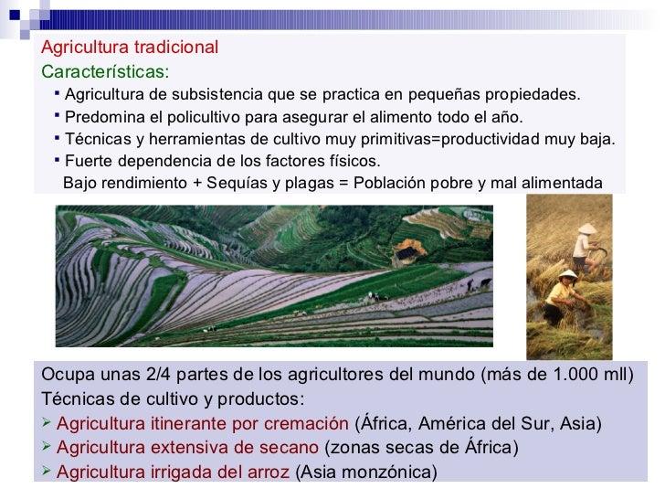 <ul><li>Agricultura tradicional </li></ul><ul><li>Características: </li></ul><ul><ul><li>Agricultura de subsistencia que s...