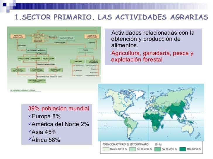 1.SECTOR PRIMARIO. LAS ACTIVIDADES AGRARIAS <ul><ul><li>39% población mundial </li></ul></ul><ul><ul><li>Europa 8% </li></...
