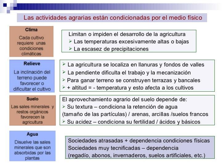 <ul><li>La agricultura se localiza en llanuras y fondos de valles </li></ul><ul><li>La pendiente dificulta el trabajo y la...