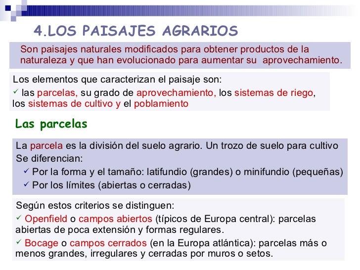4.LOS PAISAJES AGRARIOS <ul><li>La  parcela  es la división del suelo agrario.   Un trozo de suelo para cultivo </li></ul>...