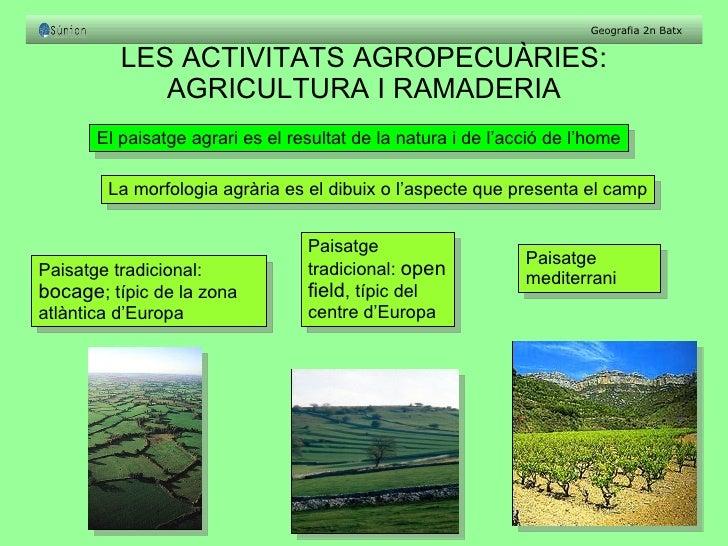 LES ACTIVITATS AGROPECUÀRIES: AGRICULTURA I RAMADERIA El paisatge agrari es el resultat de la natura i de l'acció de l'hom...