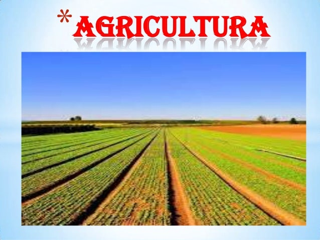 *agricultura