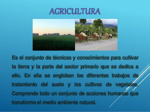 Es el conjunto de técnicas y conocimientos para cultivar la tierra y la parte del sector primario que se dedica a ello. En...