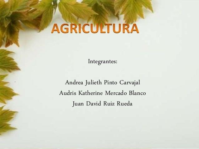 Integrantes:  Andrea Julieth Pinto Carvajal  Audris Katherine Mercado Blanco  Juan David Ruiz Rueda