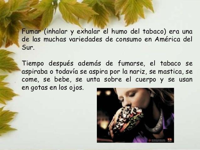 • El tabaco es uno de los principales responsables de la  deforestación mundial. De ocho árboles talados, al menos tres le...