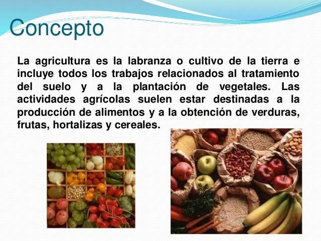 Agricultura for Que es la asociacion de cultivos