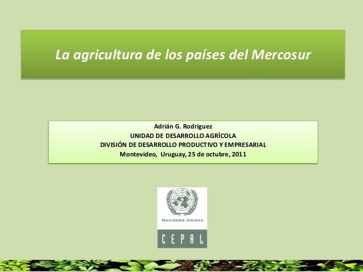 La agricultura de los países del Mercosur                       Adrián G. Rodríguez                UNIDAD DE DESARROLLO AG...
