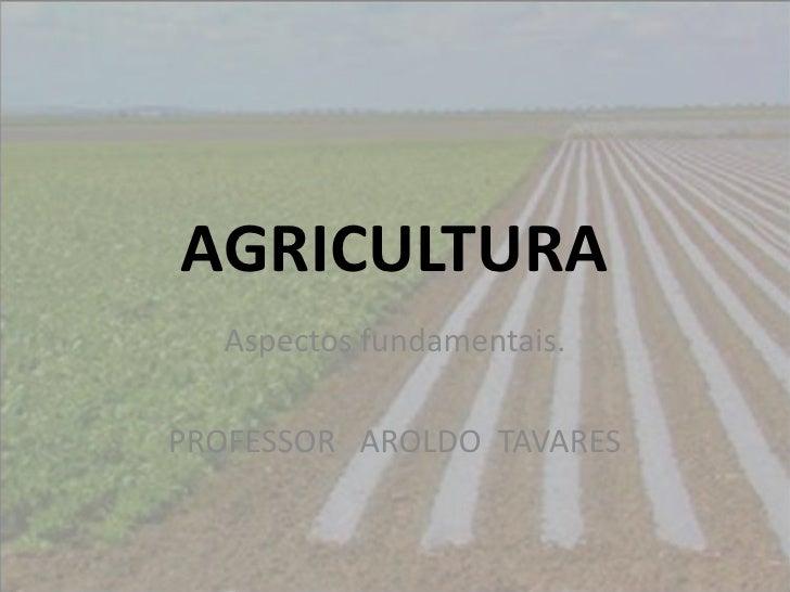 AGRICULTURA  Aspectos fundamentais.PROFESSOR AROLDO TAVARES