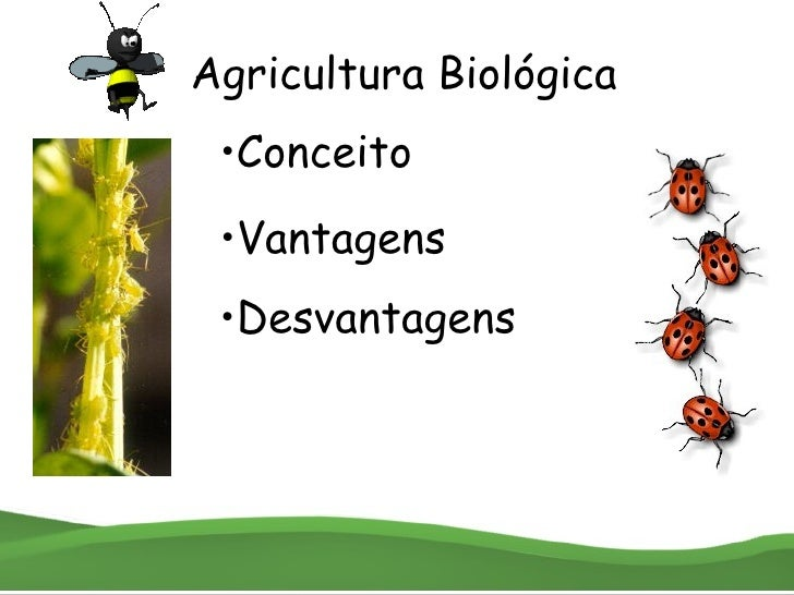Agricultura Biológica • Conceito • Vantagens • Desvantagens