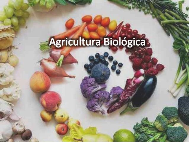 Principais características  • Agricultura extensiva muito diversificada;  • Fertilização baseada na utilização de composto...