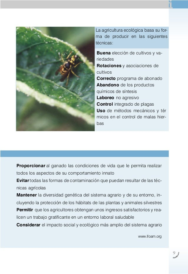 Agricultura ecologica Rotaciones de cultivos ecologicos