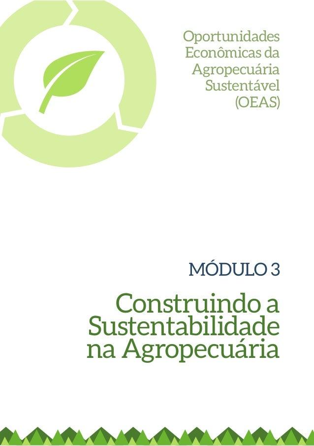 MÓDULO 3  Construindo a  Sustentabilidade  na Agropecuária  Oportunidades  Econômicas da  Agropecuária  Sustentável  (OEAS...