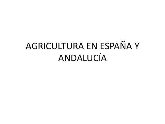 AGRICULTURA EN ESPAÑA Y ANDALUCÍA