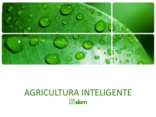 AGRICULTURA INTELIGENTE @idom