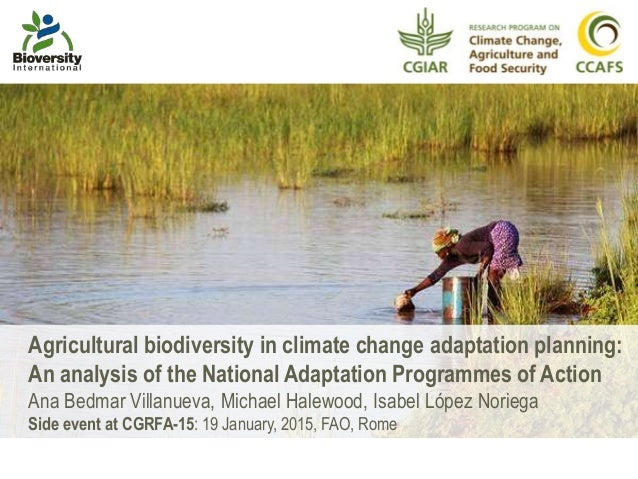 Agricultural biodiversity in climate change adaptation planning: An analysis of the National Adaptation Programmes of Acti...