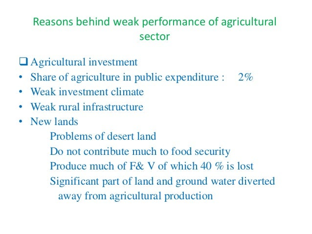 Gamal Siam 2016 Ifpri Egypt Seminar Series Role Of Agriculture In F