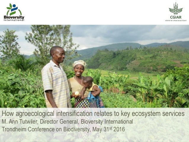 How agroecological intensification relates to key ecosystem services M. Ann Tutwiler, Director General, Bioversity Interna...