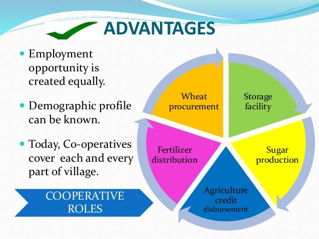 advantages and disadvantages of the village