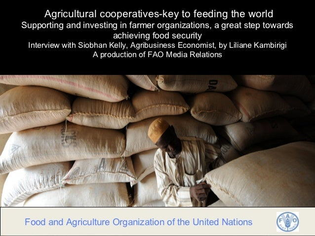 Agricultural cooperatives-key to feeding the worldSupporting and investing in farmer organizations, a great step towards  ...