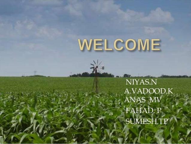 NIYAS.N A.VADOOD.K ANAS .MV FAHAD. P SUMESH.TP