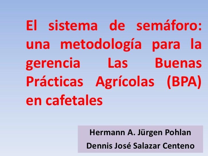 El sistema de semáforo:una metodología para lagerencia     Las   BuenasPrácticas Agrícolas (BPA)en cafetales         Herma...