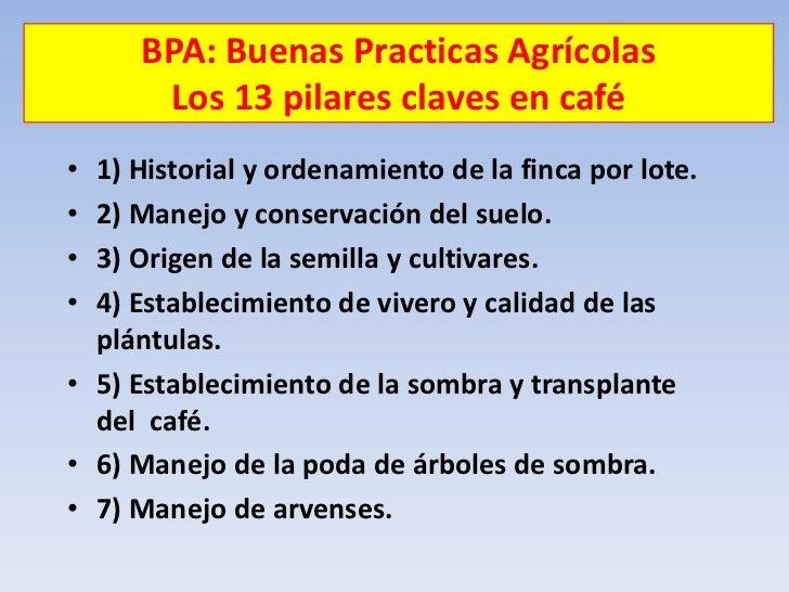 Agricultura limpia semaforo for Vivero de cafe pdf