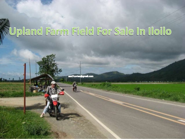 Upland Agricultural Land For Sale In Ajuy Iloilo