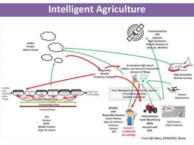 agricultural information system Enhancing market transparency -- agricultural market information system (amis)  this first, interim report introduces amis to a wide audience it presents the.