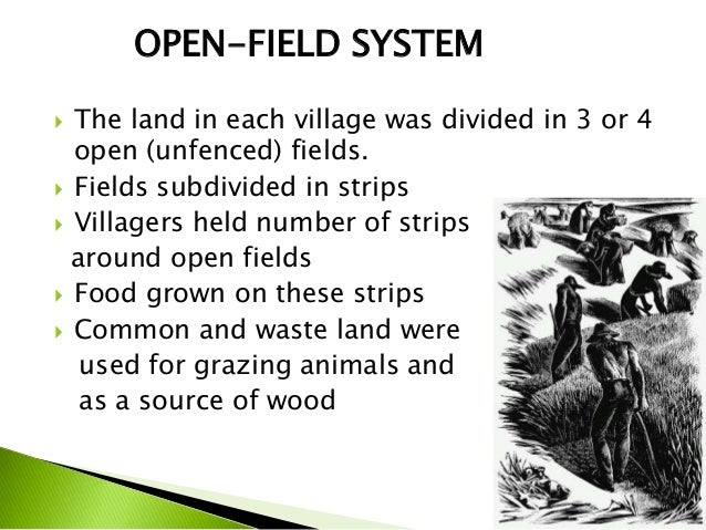 Agricultural Revolution And Enclosure Movement