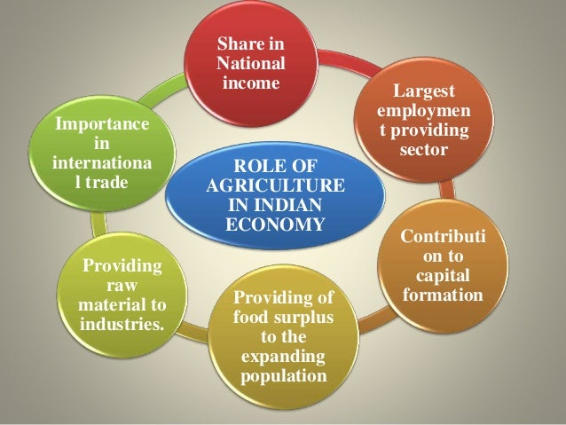 agriculture and the national economy Agriculture plays a crucial role in the life of an economy it is the backbone of our economic system agriculture not only provides food and raw material but also employment opportunities to a very large proportion of population.