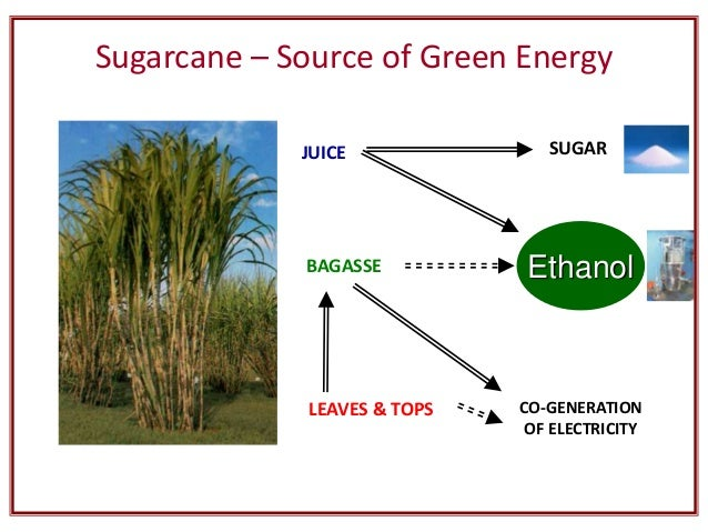 Agricultural solid waste management basic strategies By