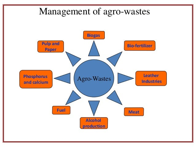 solid agricultural Ministry of agricultural and rural development  agricultural wastes - after  harvesting rice straw,  solid waste management activities, the right and duty.