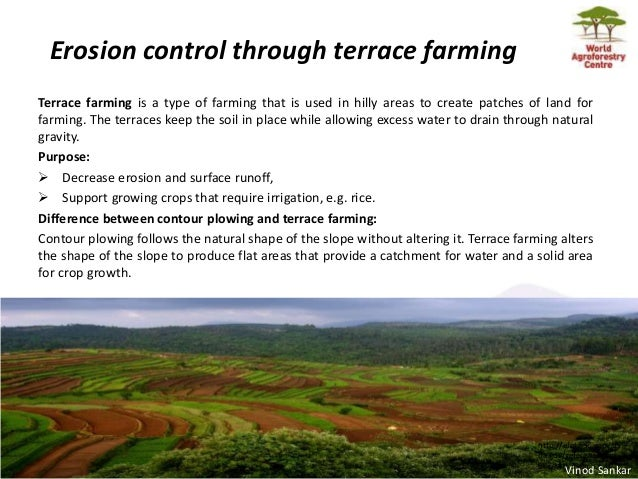 Henry neufeldt agricultural technologies for climate for Definition for terrace