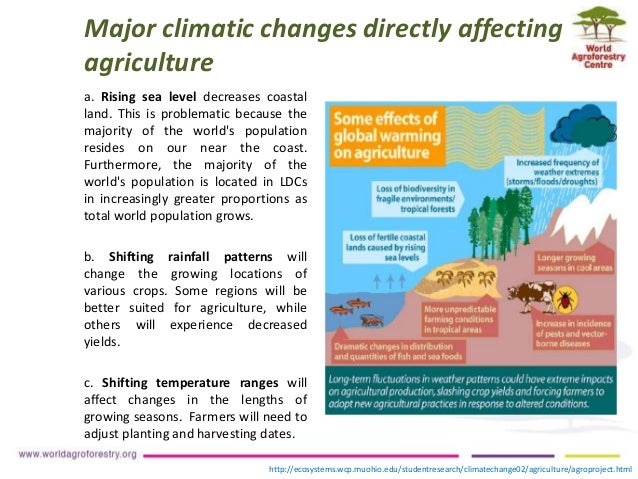 Climate Change Impacts and Adaptation Strategies for Agronomic Crops