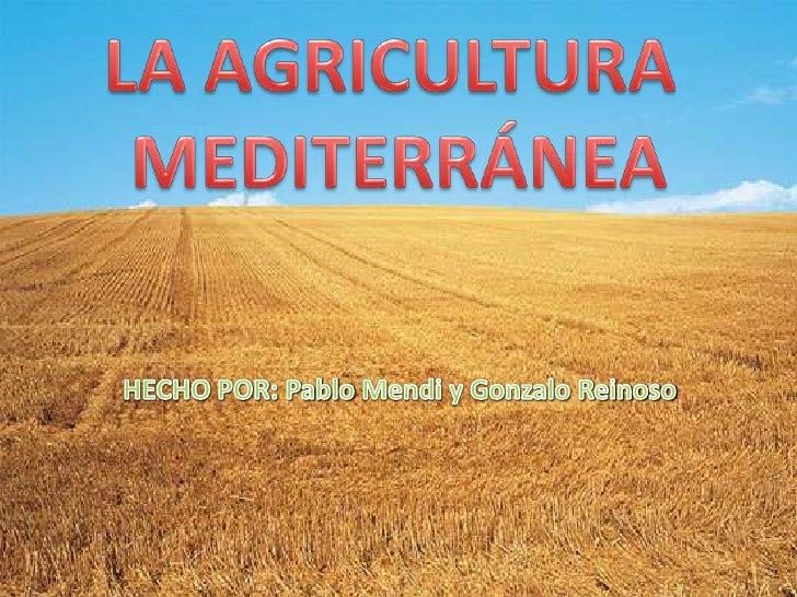 •   ¿Qué es?•   Localización•   Factores físicos•   Producción•   Elementos de los paisajes agrarios•   Cambio climático  ...