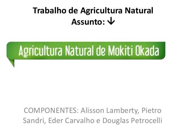COMPONENTES: Alisson Lamberty, Pietro Sandri, Eder Carvalho e Douglas Petrocelli Trabalho de Agricultura Natural Assunto: 