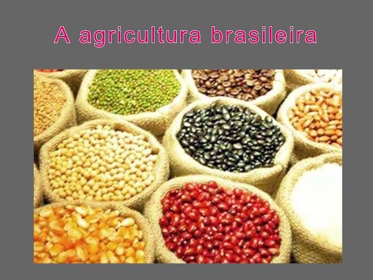 A agricultura brasileira<br />