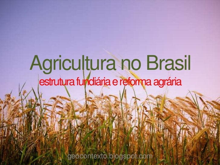 Agricultura no Brasil estrutura fundiária e reforma agrária        geocontexto.blogspot.com