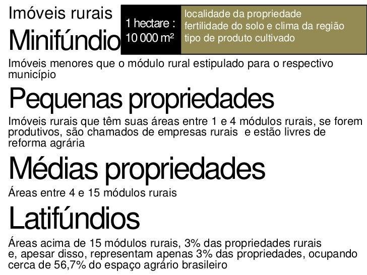 Os minifúndios concentram 70% da população rural   Policultura, subsistência   Geram 80% dos empregos na área ruralJá os...