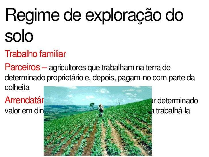 Pecuária BrasileiraUm dos maiores produtores de rebanho bovino e é o maiorexportador de carne bovina        Centro-Oeste, ...
