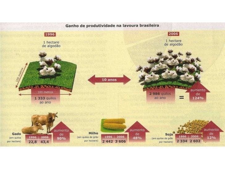 Possuímos uma das maiores áreasagrícolas do globo          851 000 000           hectares       33% ocupados pela agropecu...