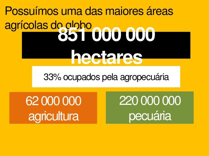 Tradicionalmente nossas exportações eram in naturaHoje são beneficiadas no Brasil e, posteriormente enviadas aoexteriorCaf...