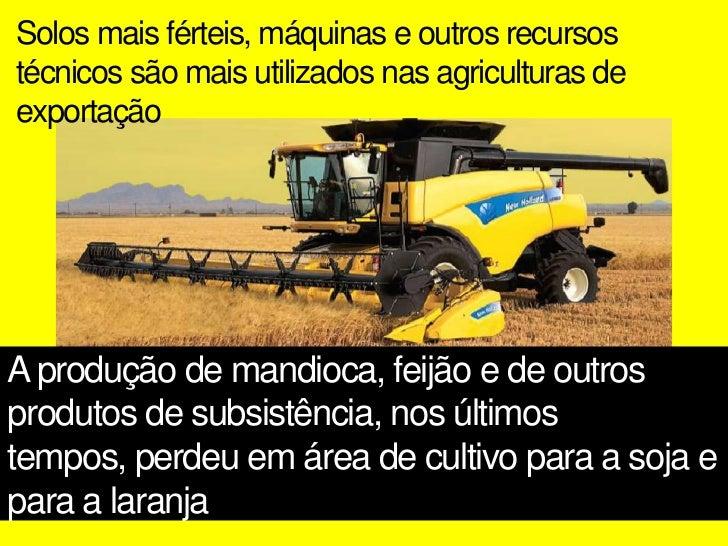 Latifúndios brasileirosOrigem no passado colonial pela divisão do país em capitaniashereditáriasPequeno grupo deproprietár...
