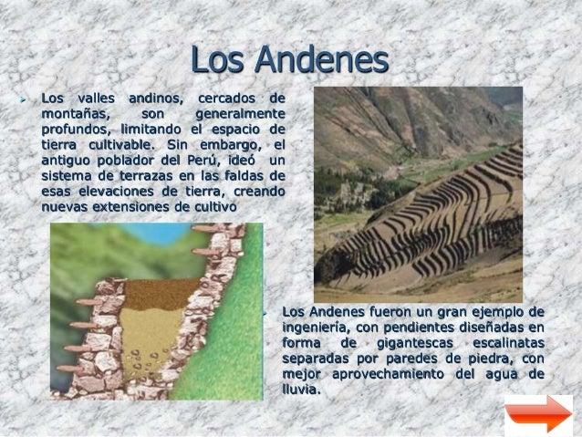 Agricultura Prehispanica