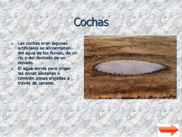 Agricultura prehispanica for Lagunas artificiales para jardin
